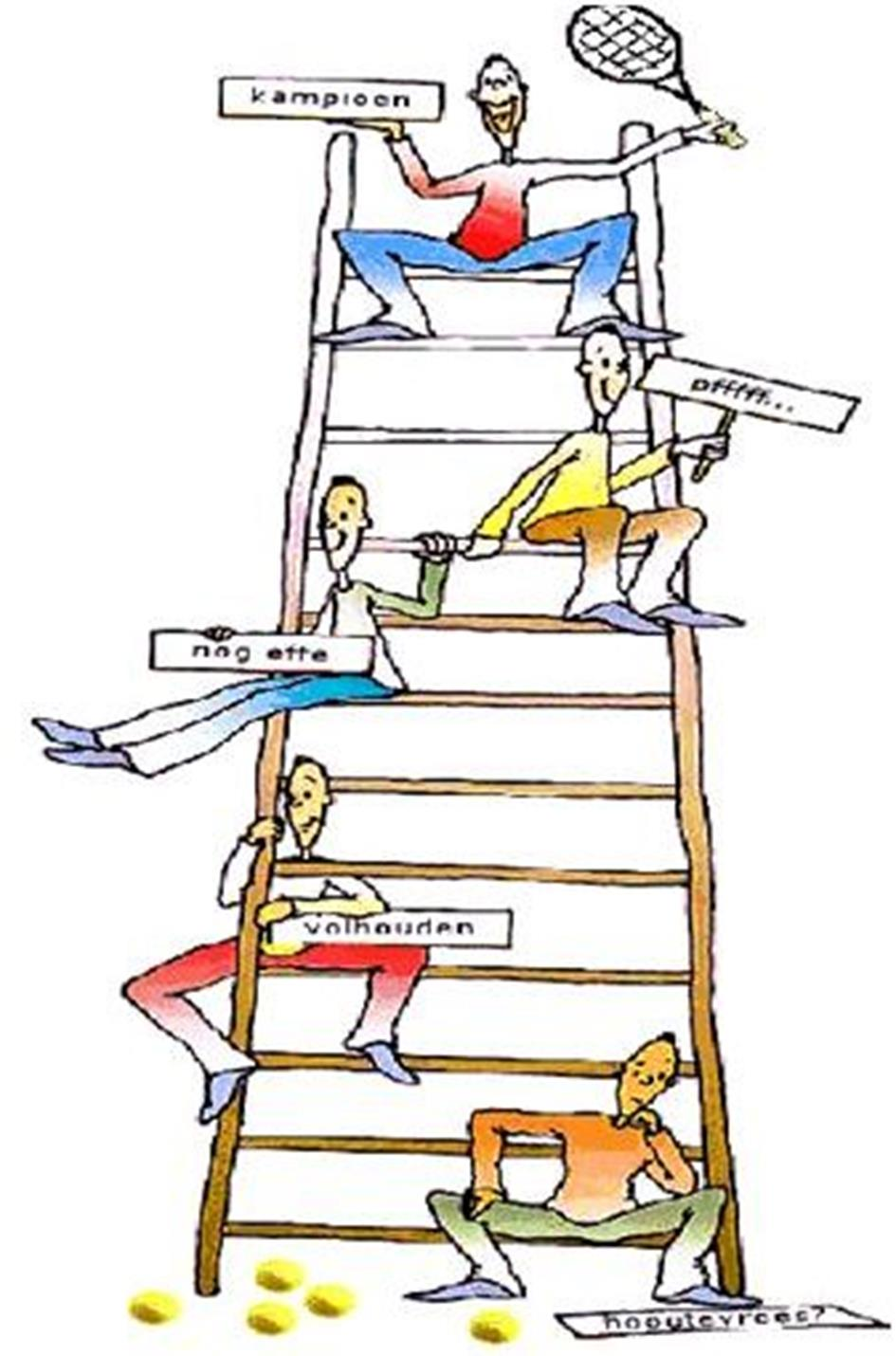 ladder-afbeelding-2016.jpg